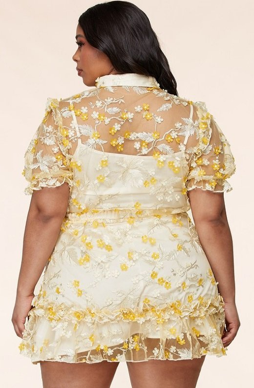 Yellow Collared Floral Overlay lace Mesh Dress Plus Size 3