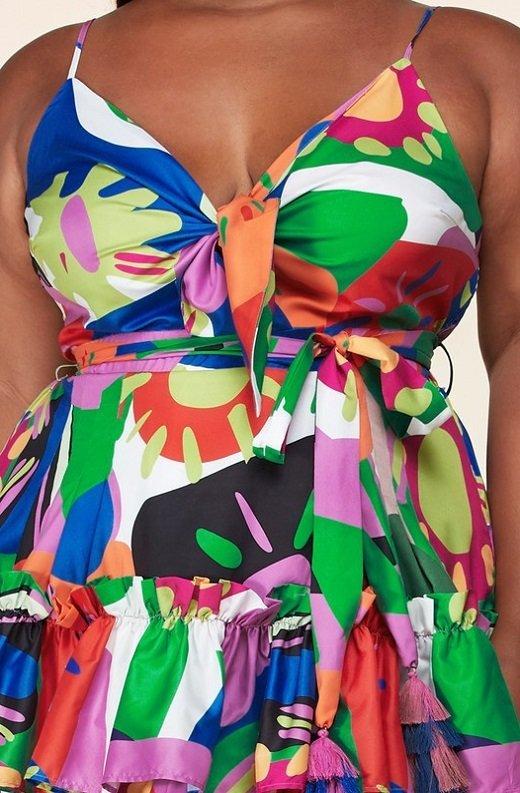Multi Color Flower Art Belted Plus Size Dress 4