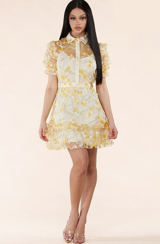 Yellow Collared Floral Overlay lace Mesh Dress 1