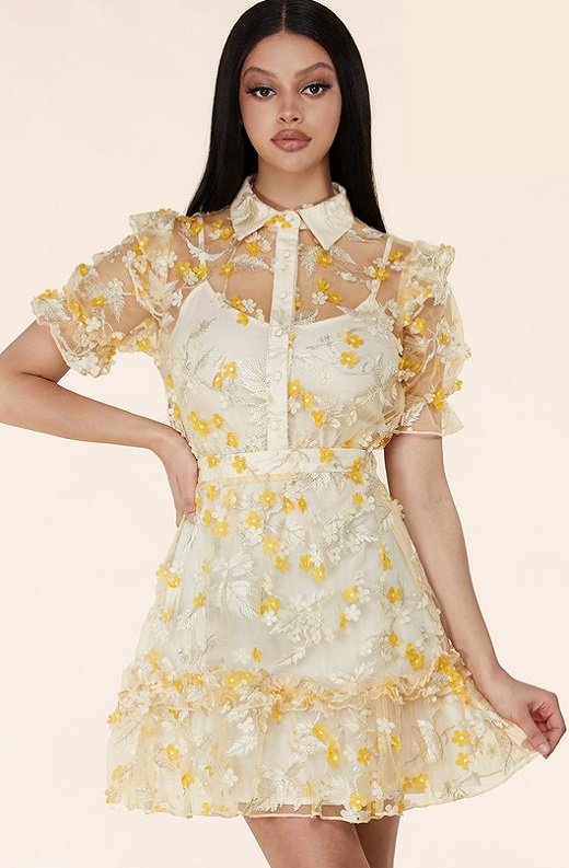 Yellow Collared Floral Overlay lace Mesh Dress 2