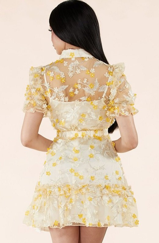 Yellow Collared Floral Overlay lace Mesh Dress 4