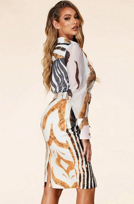 Zebra Print Long Sleeves Midi Skirt Belted Dress 2