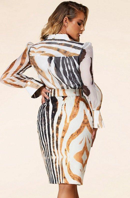 Zebra Print Long Sleeves Midi Skirt Belted Dress 3