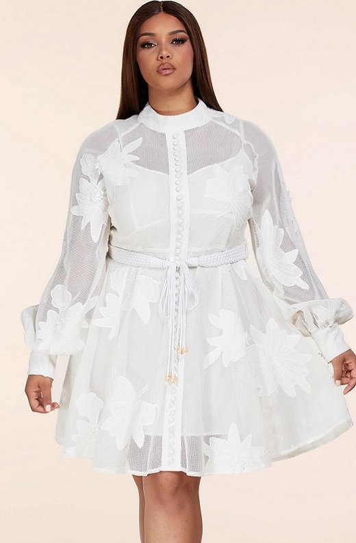 White Embroidered Floral Sheer Mesh Long Sleeves Mini Dress Plus Size 1