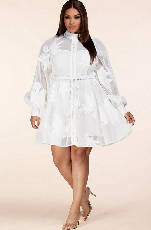 White Embroidered Floral Sheer Mesh Long Sleeves Mini Dress Plus Size 5