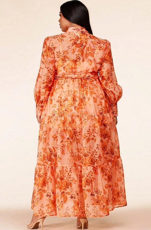 Orange Floral Sheer Chiffon Long Sleeves Maxi Dress Plus Size 3