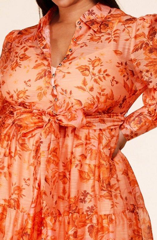 Orange Floral Sheer Chiffon Long Sleeves Maxi Dress Plus Size 4