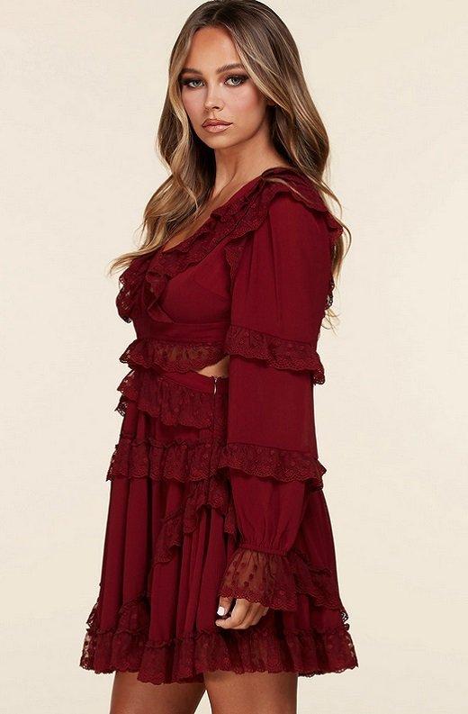 Burgundy Ruffle Cut Out Tie Up Back Mini Dress 2