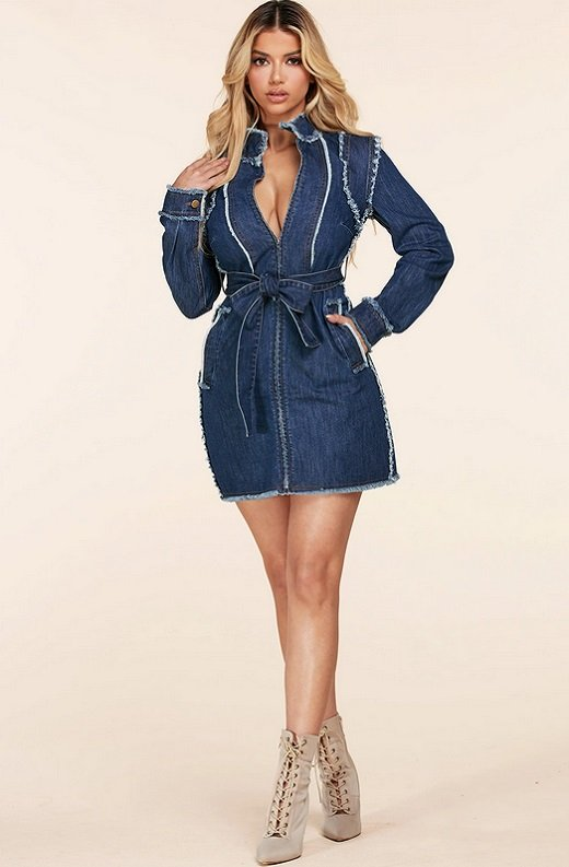 Blue Medium Wash Denim High Neck Long Sleeves Dress 1