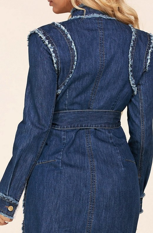 Blue Medium Wash Denim High Neck Long Sleeves Dress 6