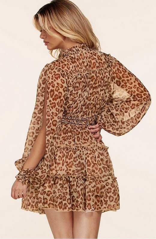 Mocha Leopard Print Open Slit Long Sleeves Midi Dress 3