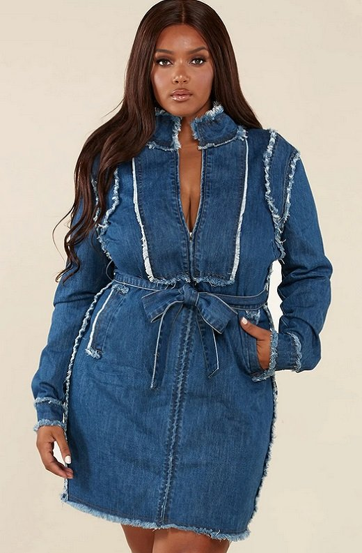 Blue Medium Wash Denim High Neck Long Sleeves Dress Plus Size 1