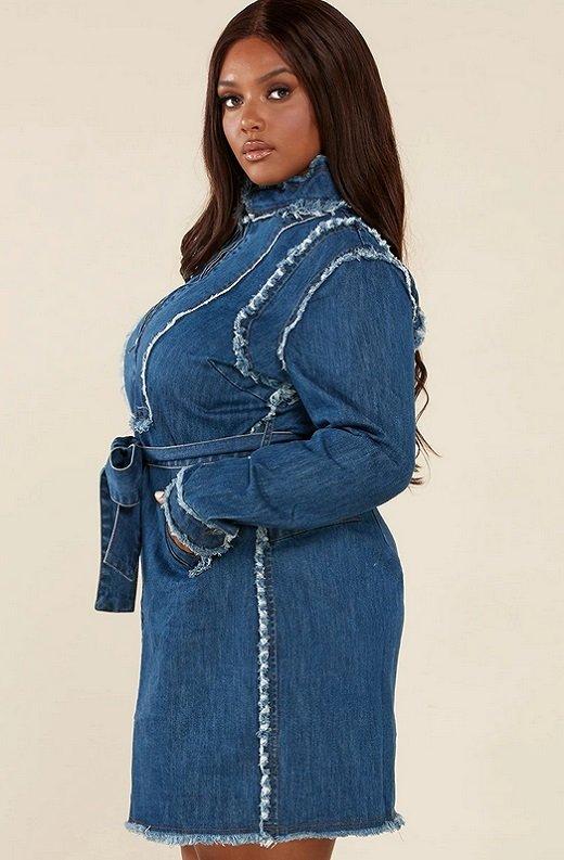 Blue Medium Wash Denim High Neck Long Sleeves Dress Plus Size 2